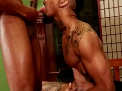 Inked brown bottom analfucked by top hunk